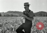 Image of farmers learn about REA Saint Clairsville Ohio USA, 1940, second 45 stock footage video 65675030606