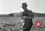 Image of farmers learn about REA Saint Clairsville Ohio USA, 1940, second 46 stock footage video 65675030606