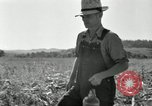 Image of farmers learn about REA Saint Clairsville Ohio USA, 1940, second 47 stock footage video 65675030606