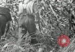 Image of farmers learn about REA Saint Clairsville Ohio USA, 1940, second 49 stock footage video 65675030606