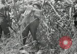 Image of farmers learn about REA Saint Clairsville Ohio USA, 1940, second 50 stock footage video 65675030606