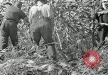 Image of farmers learn about REA Saint Clairsville Ohio USA, 1940, second 53 stock footage video 65675030606