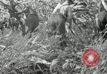 Image of farmers learn about REA Saint Clairsville Ohio USA, 1940, second 59 stock footage video 65675030606