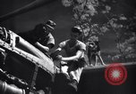 Image of Mechanics of  80th Fighter Squadron work on a P-38 New Guinea, 1944, second 14 stock footage video 65675030624