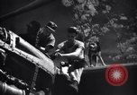 Image of Mechanics of  80th Fighter Squadron work on a P-38 New Guinea, 1944, second 15 stock footage video 65675030624