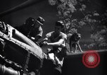 Image of Mechanics of  80th Fighter Squadron work on a P-38 New Guinea, 1944, second 19 stock footage video 65675030624