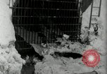Image of Snow removal at rocket facility Peenemunde Germany, 1943, second 59 stock footage video 65675030646
