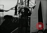 Image of Test rocket launch Peenemunde Germany, 1943, second 57 stock footage video 65675030649