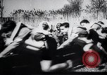 Image of Hitler Youth Germany, 1940, second 3 stock footage video 65675030669