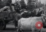 Image of Civilian refugees Kemijarvi Finland, 1941, second 15 stock footage video 65675030672