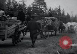 Image of Civilian refugees Kemijarvi Finland, 1941, second 17 stock footage video 65675030672