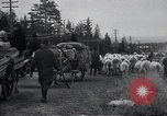 Image of Civilian refugees Kemijarvi Finland, 1941, second 18 stock footage video 65675030672