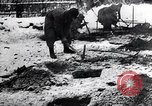Image of block houses Eastern Front European Theater, 1942, second 37 stock footage video 65675030722