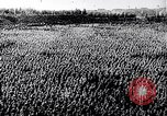 Image of Adolf Hitler Thuringia Germany, 1933, second 24 stock footage video 65675030763