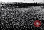Image of Adolf Hitler Thuringia Germany, 1933, second 27 stock footage video 65675030763