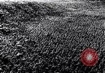 Image of Adolf Hitler Thuringia Germany, 1933, second 36 stock footage video 65675030763