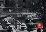 Image of hippopotamus New York United States USA, 1931, second 31 stock footage video 65675030768