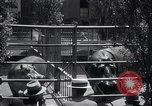 Image of hippopotamus New York United States USA, 1931, second 32 stock footage video 65675030768