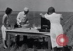 Image of wheat biscuits Monument Kansas USA, 1931, second 19 stock footage video 65675030769