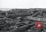 Image of flood water Nelscott Oregon United States USA, 1936, second 42 stock footage video 65675030775