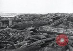 Image of flood water Nelscott Oregon United States USA, 1936, second 43 stock footage video 65675030775