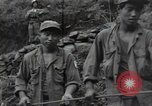 Image of Combat Team Korea, 1950, second 17 stock footage video 65675030814