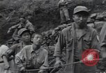 Image of Combat Team Korea, 1950, second 19 stock footage video 65675030814