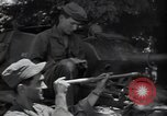 Image of US Army 25th Infantry Division Korea, 1950, second 49 stock footage video 65675030819