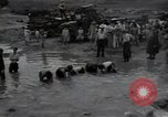 Image of 24th infantry division South Korea, 1950, second 29 stock footage video 65675030821