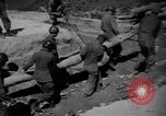 Image of 24th infantry division South Korea, 1950, second 56 stock footage video 65675030821