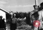 Image of Battle of Naples Brindisi Italy, 1943, second 31 stock footage video 65675030868