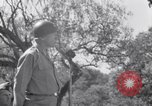 Image of General George Patton Cefalu Italy, 1943, second 28 stock footage video 65675030881