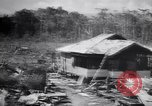 Image of Japanese airfield and planes at Lae destroyed by allied bombers New Guinea, 1943, second 33 stock footage video 65675030887