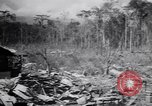 Image of Japanese airfield and planes at Lae destroyed by allied bombers New Guinea, 1943, second 35 stock footage video 65675030887