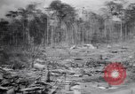 Image of Japanese airfield and planes at Lae destroyed by allied bombers New Guinea, 1943, second 36 stock footage video 65675030887