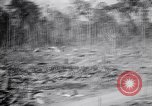 Image of Japanese airfield and planes at Lae destroyed by allied bombers New Guinea, 1943, second 37 stock footage video 65675030887
