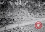 Image of Japanese airfield and planes at Lae destroyed by allied bombers New Guinea, 1943, second 39 stock footage video 65675030887