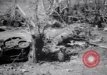 Image of Japanese airfield and planes at Lae destroyed by allied bombers New Guinea, 1943, second 41 stock footage video 65675030887