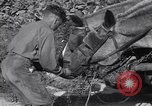 Image of British soldiers Salerno Italy, 1943, second 49 stock footage video 65675030913