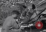 Image of British soldiers Salerno Italy, 1943, second 50 stock footage video 65675030913