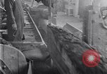 Image of Lumbering United States USA, 1929, second 41 stock footage video 65675030993