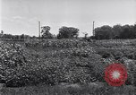 Image of Ford gardens Michigan United States USA, 1932, second 37 stock footage video 65675030998