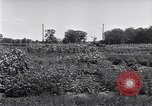 Image of Ford gardens Michigan United States USA, 1932, second 38 stock footage video 65675030998