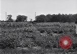 Image of Ford gardens Michigan United States USA, 1932, second 40 stock footage video 65675030998