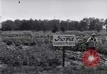 Image of Ford gardens Michigan United States USA, 1932, second 44 stock footage video 65675030998