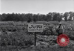 Image of Ford gardens Michigan United States USA, 1932, second 45 stock footage video 65675030998