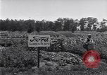 Image of Ford gardens Michigan United States USA, 1932, second 46 stock footage video 65675030998