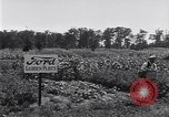 Image of Ford gardens Michigan United States USA, 1932, second 47 stock footage video 65675030998