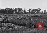 Image of Ford gardens Michigan United States USA, 1932, second 49 stock footage video 65675030998