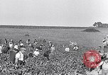 Image of grape harvest France, 1931, second 6 stock footage video 65675031149